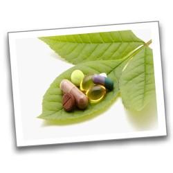 Herbs (2)