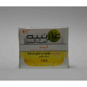 GARNIER SKIN NATURALS  fairness+dark spots prevention cream 40 ml